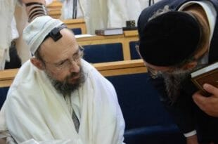 """המקובל הרב דב קוק מטבריה בשיחה עם הגאון הרב דוד גרוסמן ממגדל העמק אודות הגה""""צ הרב ברלנד"""