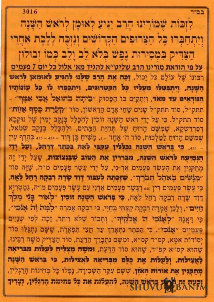"""תפילה שמורינו הגה""""צ הרב אליעזר ברלנד שליט""""א יגיע לאומן לקיבוץ של ימי ראש השנה - חלק 1"""