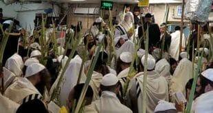 """הגה""""צ הרב אליעזר ברלנד שליט""""א עם ארבעת המינים - תפילות הקודש של חג הסוכות תשע""""ט"""