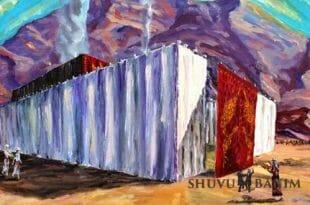באדיבות הצייר יהושע וייס שיחי'